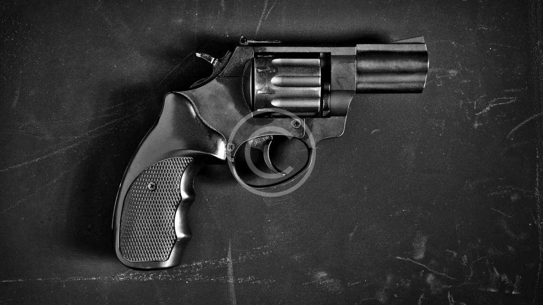 Seasoned Shooter